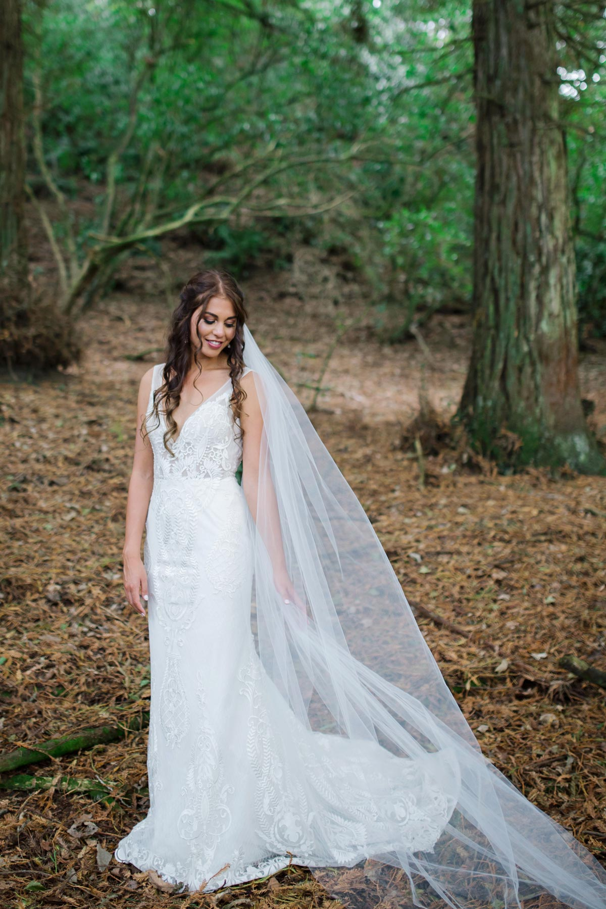 Amanda+Zane Benedetti Wedding Dress Veil Train Forest 0717